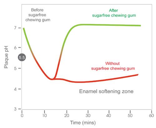 Starlight-dental-clinic-diagram-chewing-sugar-free-gum